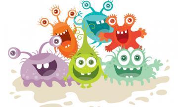 bacterie of virus